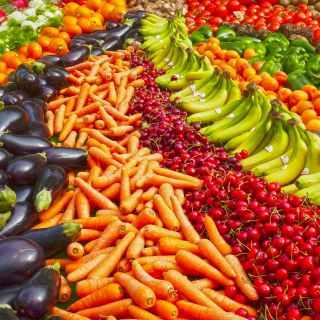 Yaşlanma; Sağlıklı Beslenmek