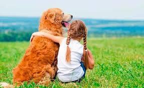 Sevginin temeli ve güven Duygusu