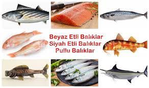 Balık Mevsimi ve Türleri