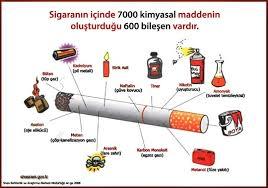Tütünün Zararları