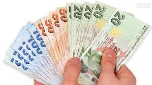 Para ve Dolaşım Sistemi