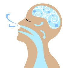 Doğru nefes almak Akciğerimize, Beynimize ve Kan dolaşımımıza Faydalıdır