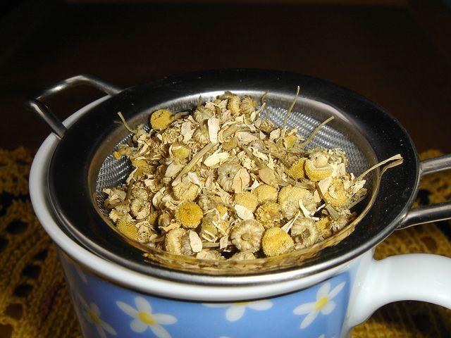 Papatya çayı için papatyanın kurutulması