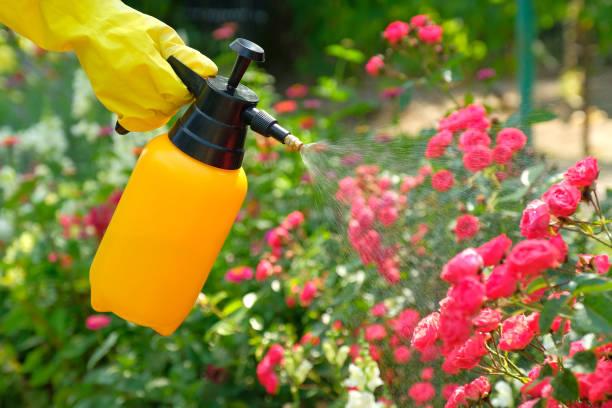 Bahçe ilaçlama