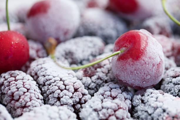 Donmuş meyve çeşitleri