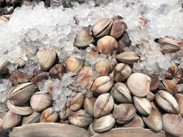 Deniz Tarağının faydaları