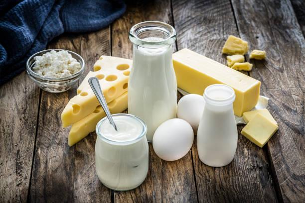 Süt ve Süt ürünleri kooperatifçiliği