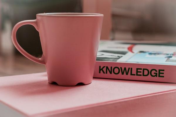Bilgiye erişim
