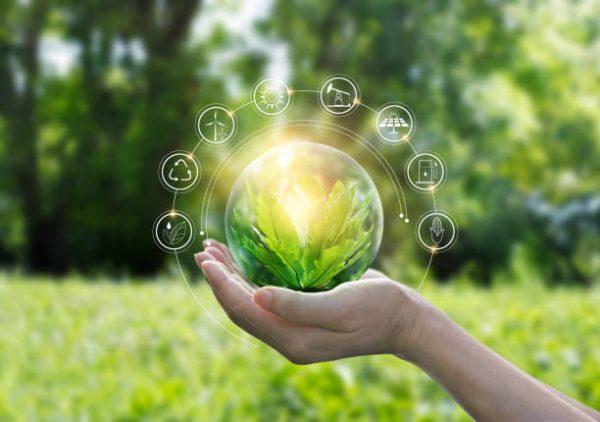Çevre koruma haftası