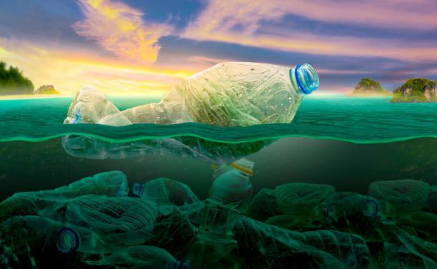 Deniz kirliliği ve sivil toplum