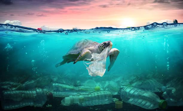 Dünya okyanuslar günü