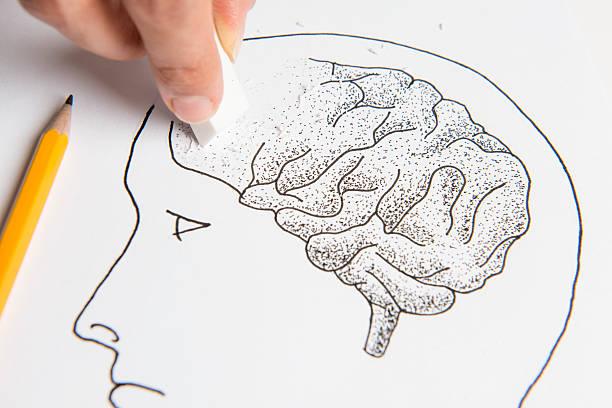 Yaşlı bir insan beyni ve özellikleri