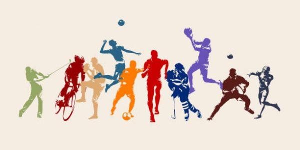Sporcularımız ve Başarıları