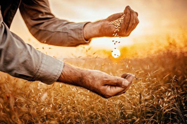 Tarım ve Topraklarımız